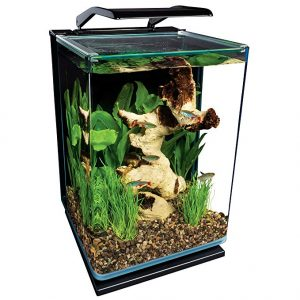 Marineland ML90609 Portrait Aquarium Kit, 5-Gallon w Hidden Filter