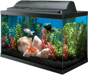 All Glass Aquarium AAG09009 Tank and Eco Hood Combo