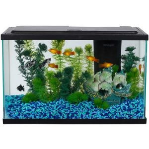 Aqua Culture Aquarium 5-Gallon Fish Tank
