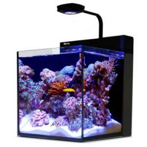 Cobalt Aquatics 14011 Microvue3 20 Aquarium Kit
