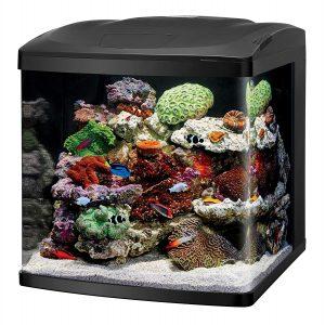 Coralife Best Nano Reef Tank