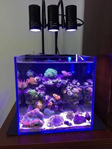Coralife New Style Size 16 LED BioCube Aquarium with Protein Skimmer and Free Hydrometer and Cleaning Magnet