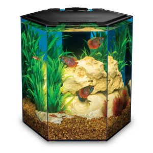 MarineLand Escape 5 Aquarium Kit