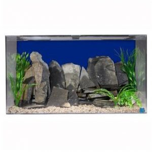 SeaClear Best Saltwater Fish Tank
