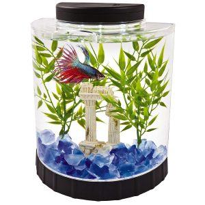 Tetra LED Half Moon Betta Aquarium, Betta Fish Tank