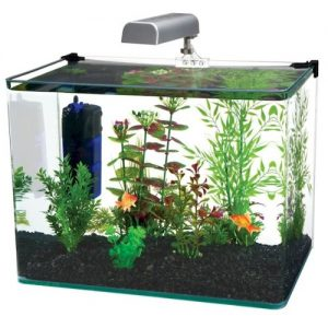 Water World Curved Corner Glass Aquarium Kit By Penn-Plax